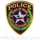 Pelican Bay Police Department Patch