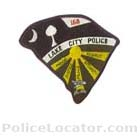 Lake City Police Department Patch