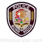 Burr Ridge Police Department Patch